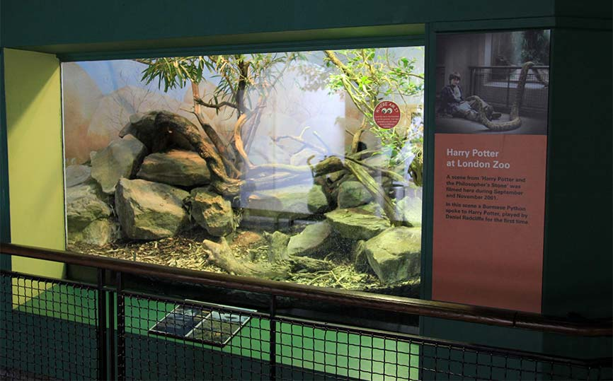 террариум Лондонского зоопарка