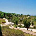Барселонский ботанический сад
