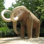 мамонт в парке