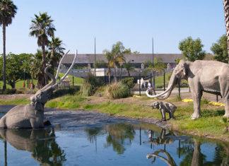 Ранчо Ла-Брея и Музей Пейджа